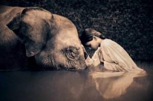 mujer-elefante