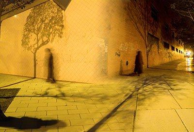 06_se-busca-la-sombra-de-un-arbol-proyectada-en-una-pared1