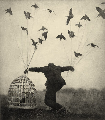flyinglesson
